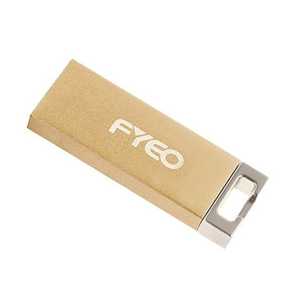 FYEO Encrypted Copy Protection USB Flash Drive Partition Edition 8GB USB 2.0 Anti Copy Anti Spy Anti Trojan Key Chain Ultra-Thin Metal USB Stick Pen Drive with AES 256-Bit Crypto (Gold)